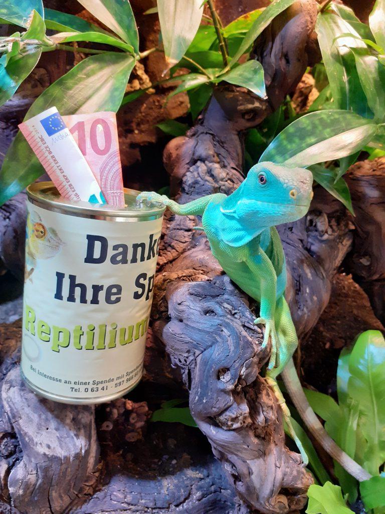 """Fidschi """"Franzl"""" sammelt spenden für das Reptilium Landau"""